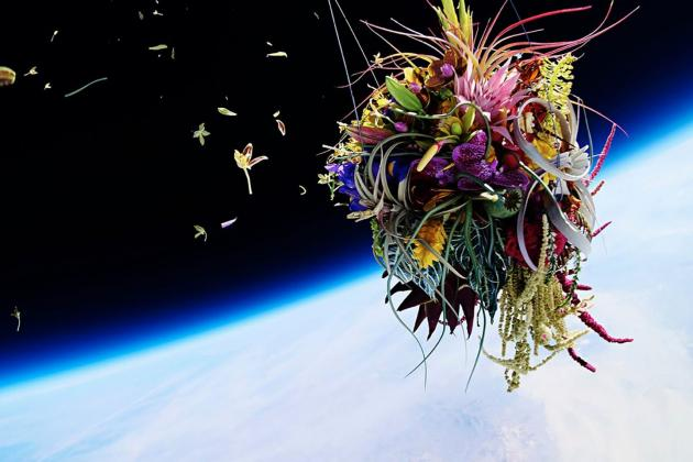 Exobiotanica_Botanical Space Flight
