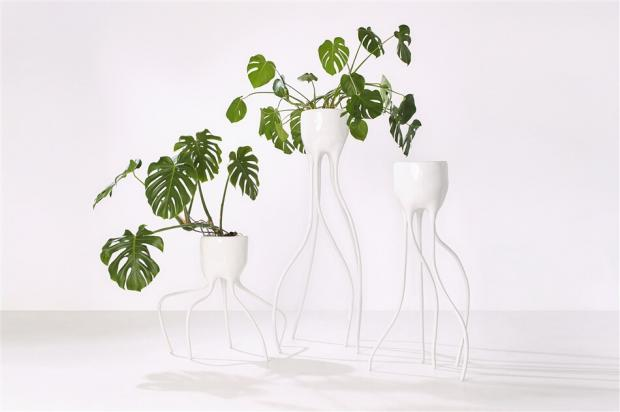 Plant Fever: Towards a phyto-centred design