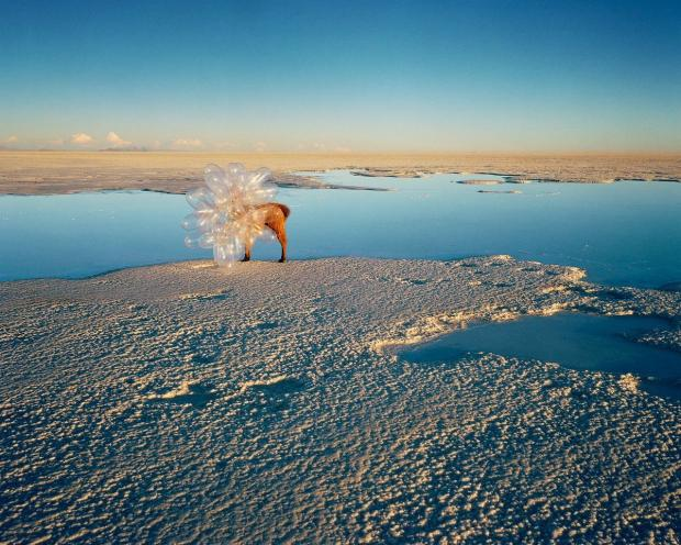 Photographer Scarlett Hooft Graafland's, Vanishing Traces