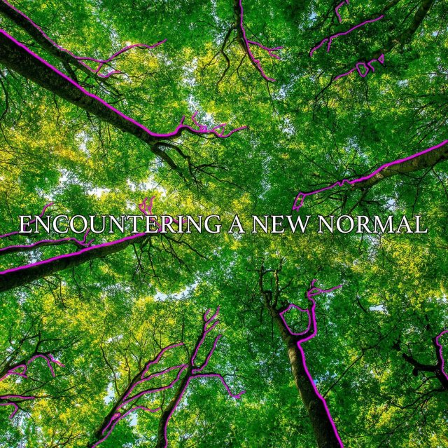 Encountering A New Normal